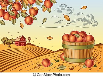 Apple harvest landscape - Retro landscape with apple harvest...