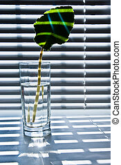 Leaf in glass 2 - One green leaf in glass Jalousie shadow on...