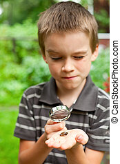 Kid observing snail - Young boy looking at snail through...