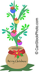 Christmas Tree Plant in a Pot - Here is a contemporary...