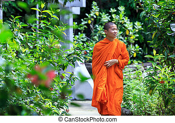 Young Buddhist Monk - Portrait of Young Buddhist Monk at...