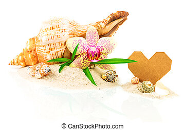 Shells on sand with orchid, bamboo and heart shape from...