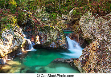 Mountain stream in the Lepena valley in Slovenia