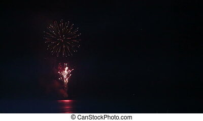 firework in night sky - bright firework in night sky on dark...