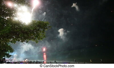 firework in the sky