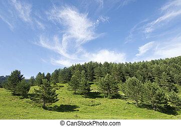 idyllic landscape - view of a idyllic landscape