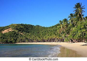 tropical Island - The beach of tropical Island of...