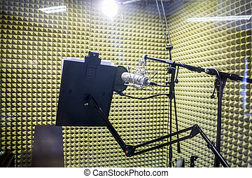 Small professional recording studio