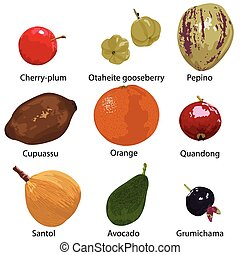 fruits on white background - set of different fruits on a...