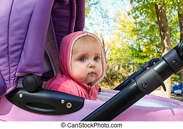 small child sits in the stroller