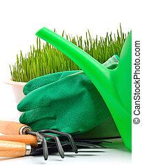 Regadera, rastrillo, olla, caucho, guantes, y, verde, pasto...