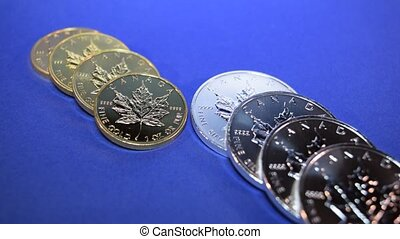 Gold and Silver Bullion Coins - Two rows of Gold and Silver...