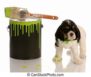 naughty puppy - cocker spaniel puppy with paint can and...
