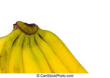 bannana - A colorful bunch of  bannanas