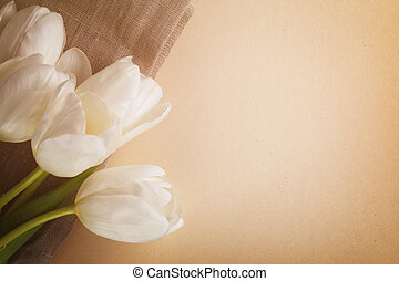 beautiful white tulips on paper background with copy space,...
