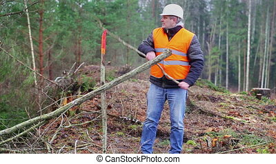 Forest worker moving branches