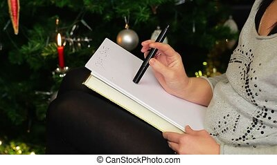 Women try to write letter to Santa