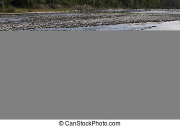 Mountain stream nature scene - mountain river cristll clear...
