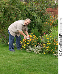 Happy man in a garden - Happy man, looking after a flowers
