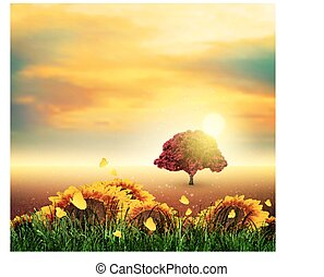 Summer, Field, Tree, Sky, Sun, Sunset, Grass, Sunflowers,...
