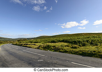 road bends in the moor, Dartmoor