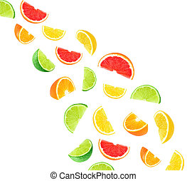 citrus fruit slices - Citrus fruit slices isolated on white