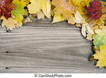 background of multicolored autumn leaves on the old wooden...