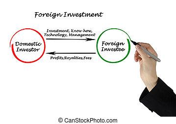 extranjero, Investment, ,