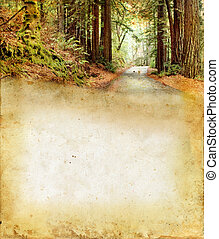 Road Through the Forest on a grunge background