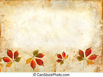 Fall Leaves on a grunge background - Virginia Creeper leaves...