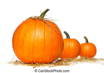 Pumpkins with straw on white background