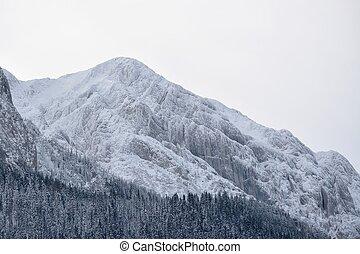Alpine Landscape, mount Piatra Craiului, Romania