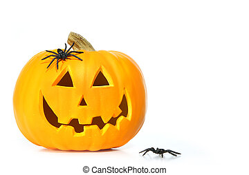 Carved halloween pumpkin with spiders