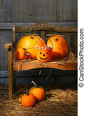 Small and big pumpkins on an old bench