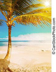 トロピカル, 芸術, 浜, ハワイ \, 海