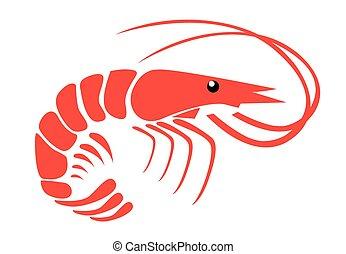 Shrimp, ,