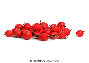 Small pile of haw berries isolated on the white background