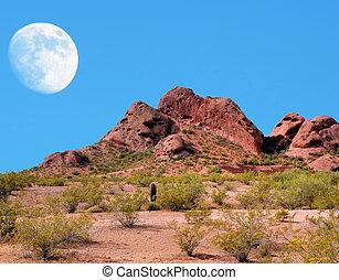 Desert Moon - Desert moon over the southwestern USA desert...