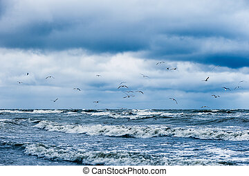 Stormy sea with seagulls in blue sky