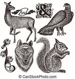 Collection of hand drawn animals f - Set of vector detailed...