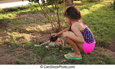 Little Girl Petting Cat Outside - Young girl outside petting...