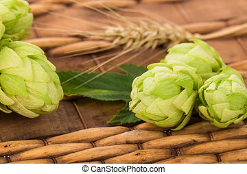 Fresh green hops on a plaited background