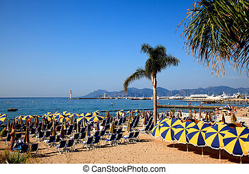 beach in Cannes France - The scenery of beach in Cannes...