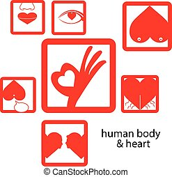 vector red icon human body and heart, love concept