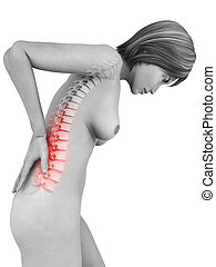 backache - 3d rendered illustration of a woman with...