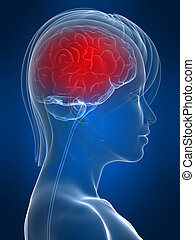 headache migraine - 3d rendered illustration of a female...