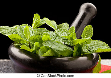 Mint - photo of fresh aromatic mint in mortar on a glass...