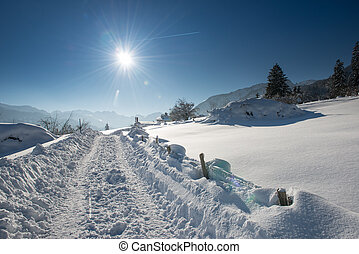 tractor tracks in snow landscape at sunny winter day in...