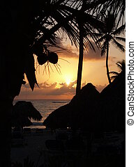 sunrise on the beach  - sunrise on the caribian beach