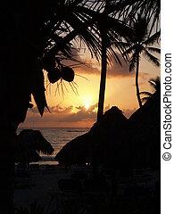 sunrise on the beach  - sunrise on the caribian beach